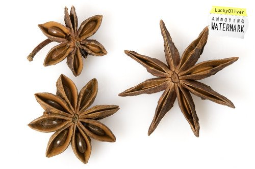 Mua Best Price for Autumn Star Anise from Vienam