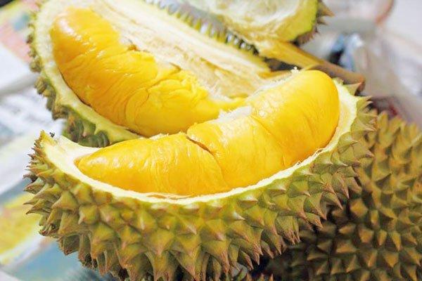 Mua Dried durian (Sầu riêng sấy khô )
