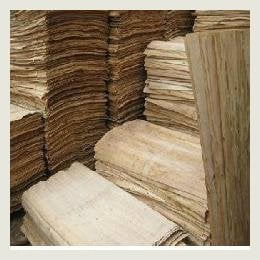Mua Wooden products ( Core Veneer,plywood,charcoal,pallet)