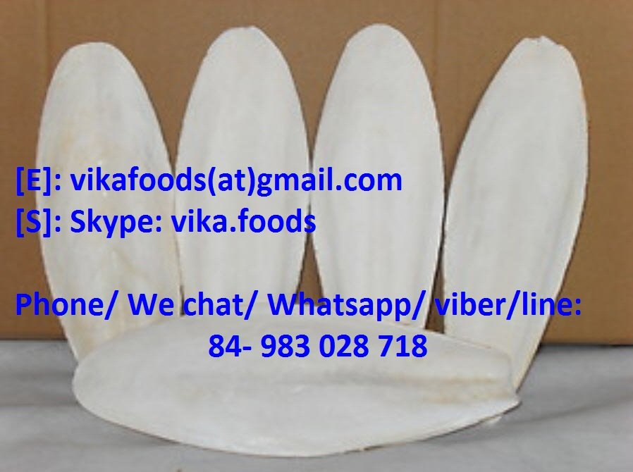 Mua CUTTLEFISH BONE
