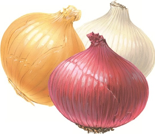 Mua Onions