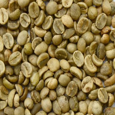 Mua Washed Arabica green Coffee beans Grade 1 screen 16