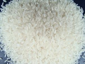 Mua Gạo hạt dài