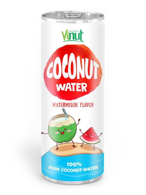 Природные Кокосовая вода 250мл Алюминий может Waterlemon вкус