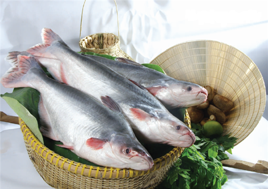 Whole Pangasius
