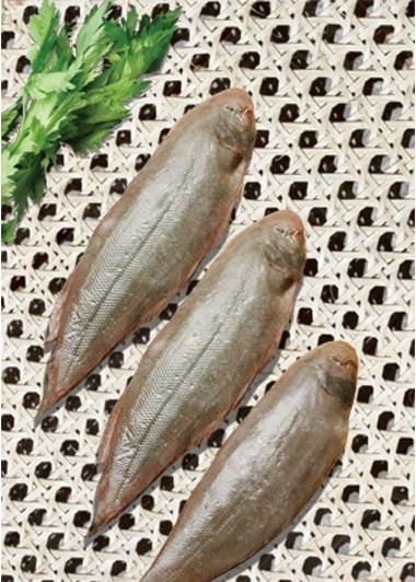 Mua Cá Lưỡi Trâu nguyên Con