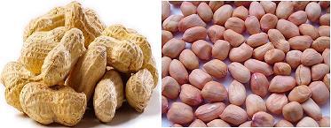 Mua Peanut