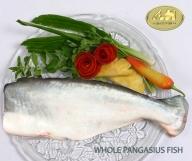 Mua Рыба pangasius