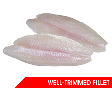 Mua Well-Trimmed Pangasius Fillet