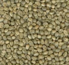 Vietnamese Washed Robusta Coffee Grade 1. Scr18