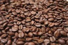 Mua Coffe Arabica
