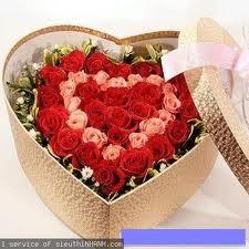 Mua Hoa tình yêu