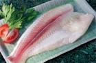 Mua Fillet cá thịt đỏ