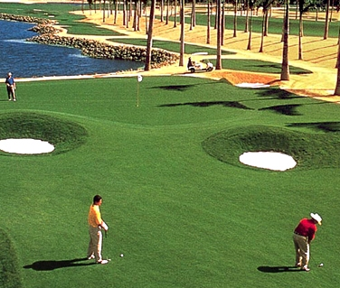 Mua Cỏ nhân tạo sân golf