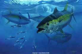 Mua Fish