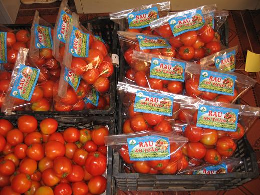 Mua Cà chua sạch