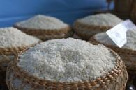 Mua Gạo Nếp Cái Hoa Vàng