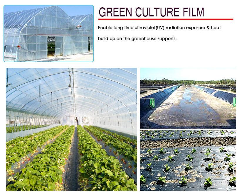 Mua Green Culture Film