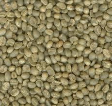 Mua Cà phê hạt