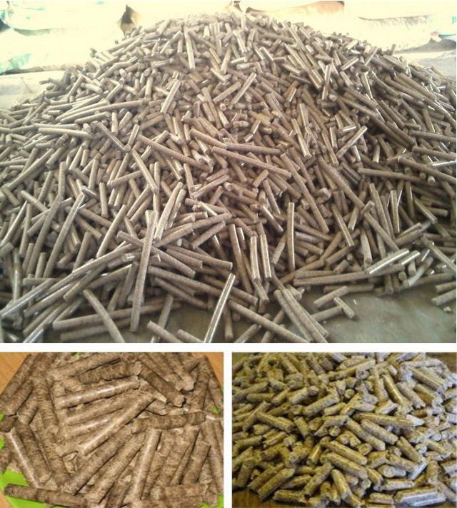 Mua Wood pellet