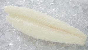 Mua Fillet trắng vàng