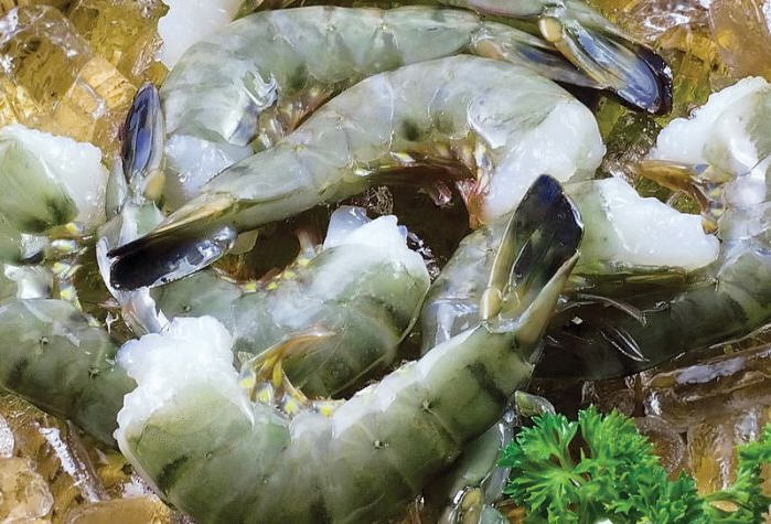 Mua Shrimp