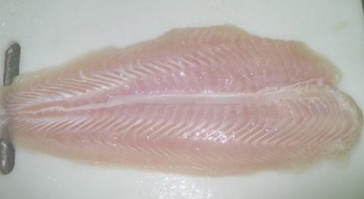 Mua Pagasius fillet well-trimmed