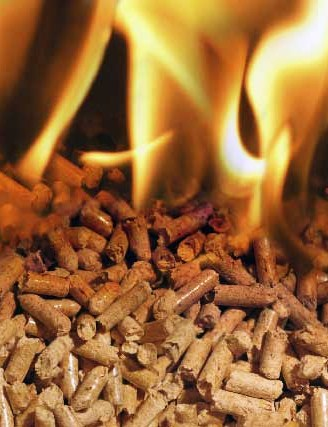 Mua Rice husk pellets