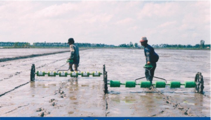 Mua Rice Seeder