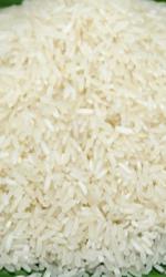 Mua Vietnamese Long grain White Rice
