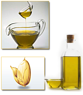 Mua Rice bran oil