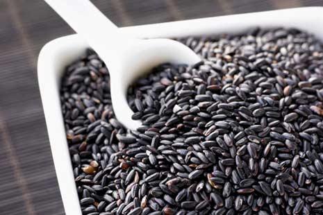 Mua Purple Rice, Gạo Tím Than, Gạo than đen Phúc An, Gạo nếp cẩm