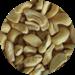 Cashew nut ww450