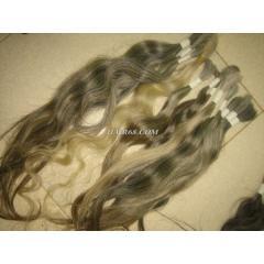 GREY HAIR-12
