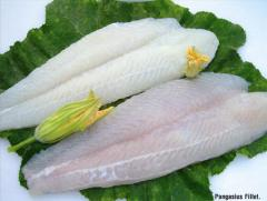 Cheap price Frozen pagasius fillet