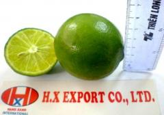 Lime with seed