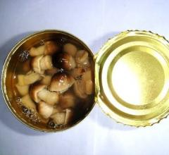 Mushrooms, canned