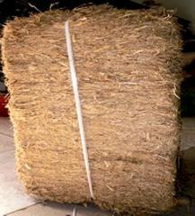 Sugarcane bagasse block
