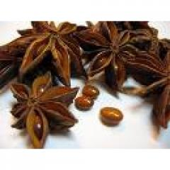 Fruits of anise