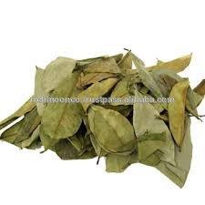 Dried Graviola Leaves from Vietnam