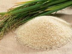 Vietnam White Long Grain Rice 15% Broken