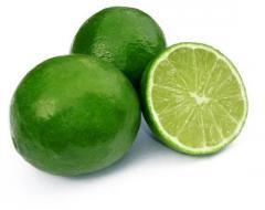 Lemon/Lime/ citrus