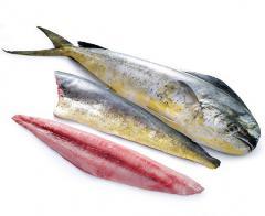 Pangasius Fillet / Frozen Seafood / Lobster