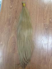 Blond hair with all lengths