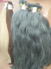 Natural grey human hair  from Vietnam