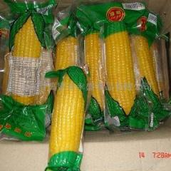 Frozen corn