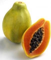 ZAMOROZHENNUYU RED VYREZYVANIYA DICE papaya