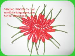 BIG SUPPLIER IN VIETNAM - SPICE EXPORTER- FRESH/DRIED/FROZEN RED CHILLI