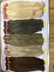 Color human Viet Nam natural remy hair