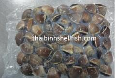 FROZEN COOKED BROWN WHOLE CLAM SHELL ON